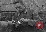 Image of German prisoners Normandy France, 1944, second 9 stock footage video 65675059455