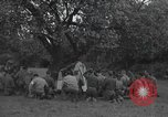 Image of 56th Signal Battalion Saint Laurent Sur Mer France, 1944, second 6 stock footage video 65675059456