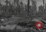 Image of Destruction on Wakde Island from Japanese air raid Wakde Island New Guinea, 1944, second 9 stock footage video 65675059508