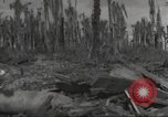 Image of Destruction on Wakde Island from Japanese air raid Wakde Island New Guinea, 1944, second 10 stock footage video 65675059508
