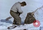 Image of snow rangers Alta Utah USA, 1950, second 4 stock footage video 65675059572