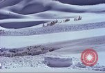 Image of slab avalanche Alta Utah USA, 1950, second 11 stock footage video 65675059577