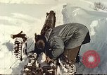 Image of avalanche Alta Utah USA, 1950, second 7 stock footage video 65675059589