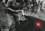 Image of Allied soldiers Goodenough Island New Guinea, 1944, second 4 stock footage video 65675059608