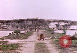 Image of United States Marines Guam Mariana Islands, 1944, second 5 stock footage video 65675059641