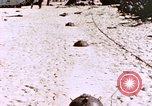 Image of United States Marines Peleliu Palau Islands, 1944, second 10 stock footage video 65675059651