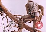 Image of United States Marines Saipan Northern Mariana Islands, 1944, second 3 stock footage video 65675059662