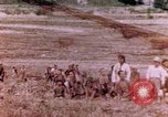 Image of United States Marines Saipan Northern Mariana Islands, 1944, second 1 stock footage video 65675059663
