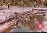 Image of US 27th Infantry Division Makin Island Kiribati Islands, 1943, second 5 stock footage video 65675059704