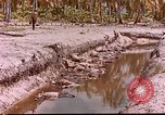 Image of US 27th Infantry Division Makin Island Kiribati Islands, 1943, second 7 stock footage video 65675059704