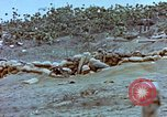 Image of Field Howitzer Iwo Jima, 1945, second 9 stock footage video 65675059758