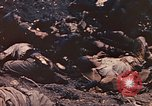 Image of dead Marines Iwo Jima, 1945, second 6 stock footage video 65675059766
