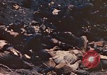 Image of dead Marines Iwo Jima, 1945, second 8 stock footage video 65675059766
