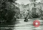 Image of Silver Springs Florida United States USA, 1920, second 3 stock footage video 65675059850