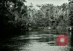 Image of Silver Springs Florida United States USA, 1920, second 11 stock footage video 65675059850