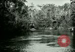 Image of Silver Springs Florida United States USA, 1920, second 12 stock footage video 65675059850