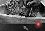 Image of fishermen United States USA, 1942, second 5 stock footage video 65675060050