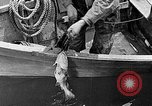 Image of fishermen United States USA, 1942, second 7 stock footage video 65675060050