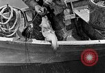 Image of fishermen United States USA, 1942, second 8 stock footage video 65675060050