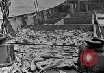 Image of fishermen United States USA, 1942, second 12 stock footage video 65675060050