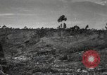 Image of Marine Corps Pacific Theater, 1944, second 1 stock footage video 65675060321