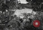 Image of Marine Corps Pacific Theater, 1944, second 8 stock footage video 65675060321