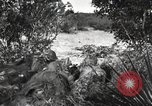 Image of Marine Corps Pacific Theater, 1944, second 10 stock footage video 65675060321