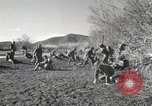 Image of Marine Corps Pacific Theater, 1944, second 10 stock footage video 65675060325