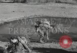 Image of Marine Corps Pacific Theater, 1944, second 4 stock footage video 65675060327