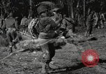 Image of Marine Corps Pacific Theater, 1944, second 1 stock footage video 65675060328