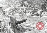 Image of Marine Corps Pacific Theater, 1944, second 4 stock footage video 65675060330