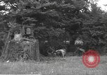 Image of United States soldiers Sainteny Normandy France, 1944, second 6 stock footage video 65675060386