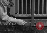 Image of United States soldiers install wire cutters on jeeps Devon England, 1944, second 24 stock footage video 65675060407