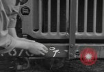 Image of United States soldiers install wire cutters on jeeps Devon England, 1944, second 26 stock footage video 65675060407