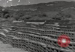 Image of United States munitions dump North Africa, 1943, second 1 stock footage video 65675060465