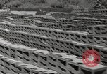 Image of United States munitions dump North Africa, 1943, second 3 stock footage video 65675060465