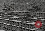 Image of United States munitions dump North Africa, 1943, second 10 stock footage video 65675060465