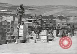 Image of Italian prisoners North Africa, 1943, second 11 stock footage video 65675060471