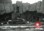 Image of polar bears Chicago Illinois USA, 1934, second 3 stock footage video 65675060546