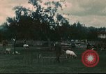 Image of German POWs Annecy France, 1944, second 1 stock footage video 65675060618