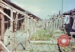 Image of homes of barracks variety Japan, 1946, second 2 stock footage video 65675060712