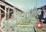 Image of homes of barracks variety Japan, 1946, second 4 stock footage video 65675060712
