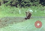 Image of Japanese farmer Kyoto Japan, 1946, second 4 stock footage video 65675060728
