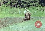 Image of Japanese farmer Kyoto Japan, 1946, second 7 stock footage video 65675060728