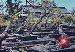 Image of Japanese nursery man Niihama Japan, 1946, second 2 stock footage video 65675060742