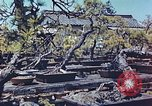 Image of Japanese nursery man Niihama Japan, 1946, second 3 stock footage video 65675060742