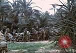 Image of 1st Division soldiers Africa, 1942, second 3 stock footage video 65675060792