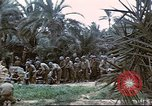 Image of 1st Division soldiers Africa, 1942, second 6 stock footage video 65675060792
