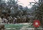 Image of 1st Division soldiers Africa, 1942, second 7 stock footage video 65675060792