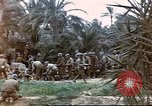 Image of 1st Division soldiers Africa, 1942, second 9 stock footage video 65675060792